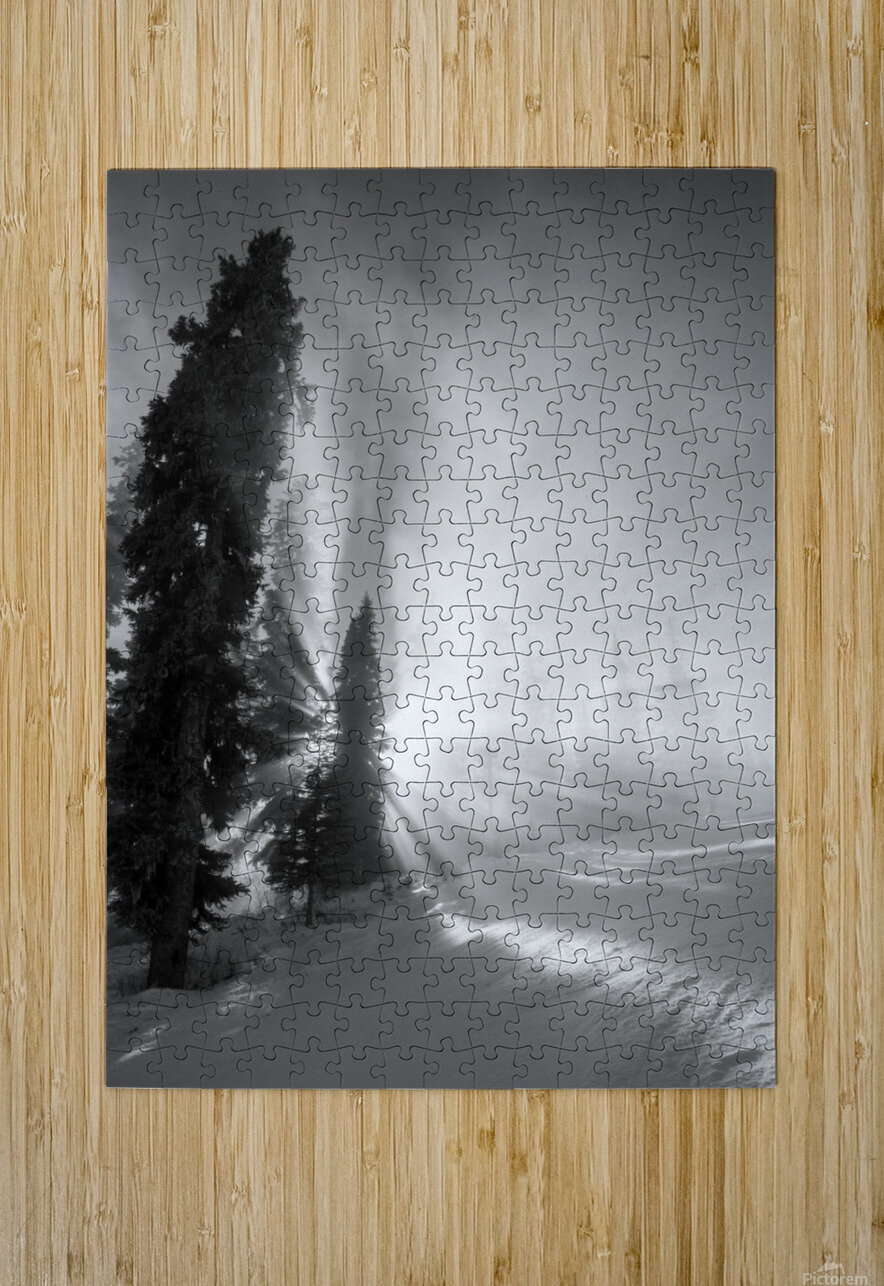 Frozen mist  HD Metal print with Floating Frame on Back