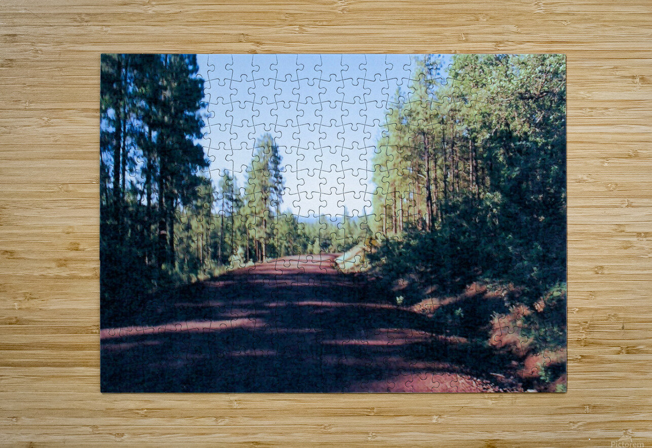 A Road Through  HD Metal print with Floating Frame on Back