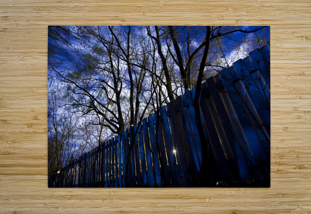IMG_1763 3  HD Metal print with Floating Frame on Back