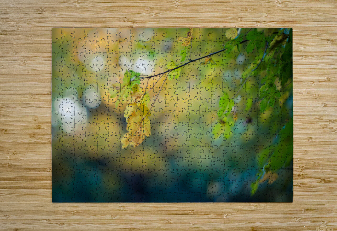Beautiful autumn background  HD Metal print with Floating Frame on Back