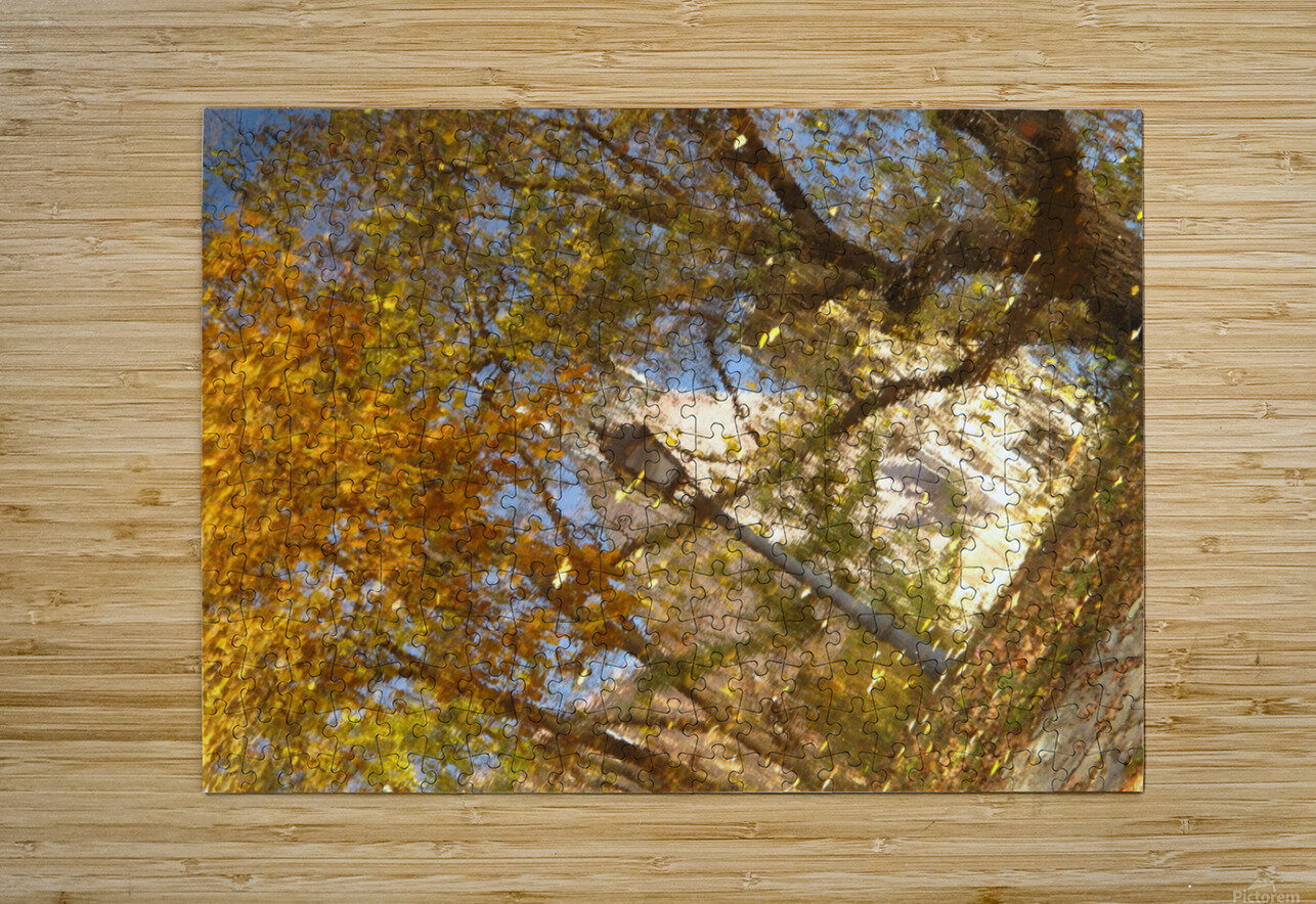 Autumn Reflections I  HD Metal print with Floating Frame on Back