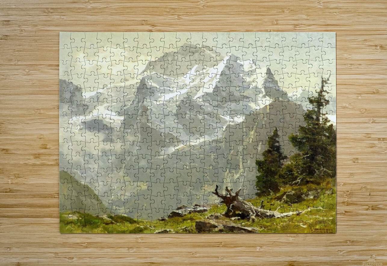 Snowcaps  HD Metal print with Floating Frame on Back