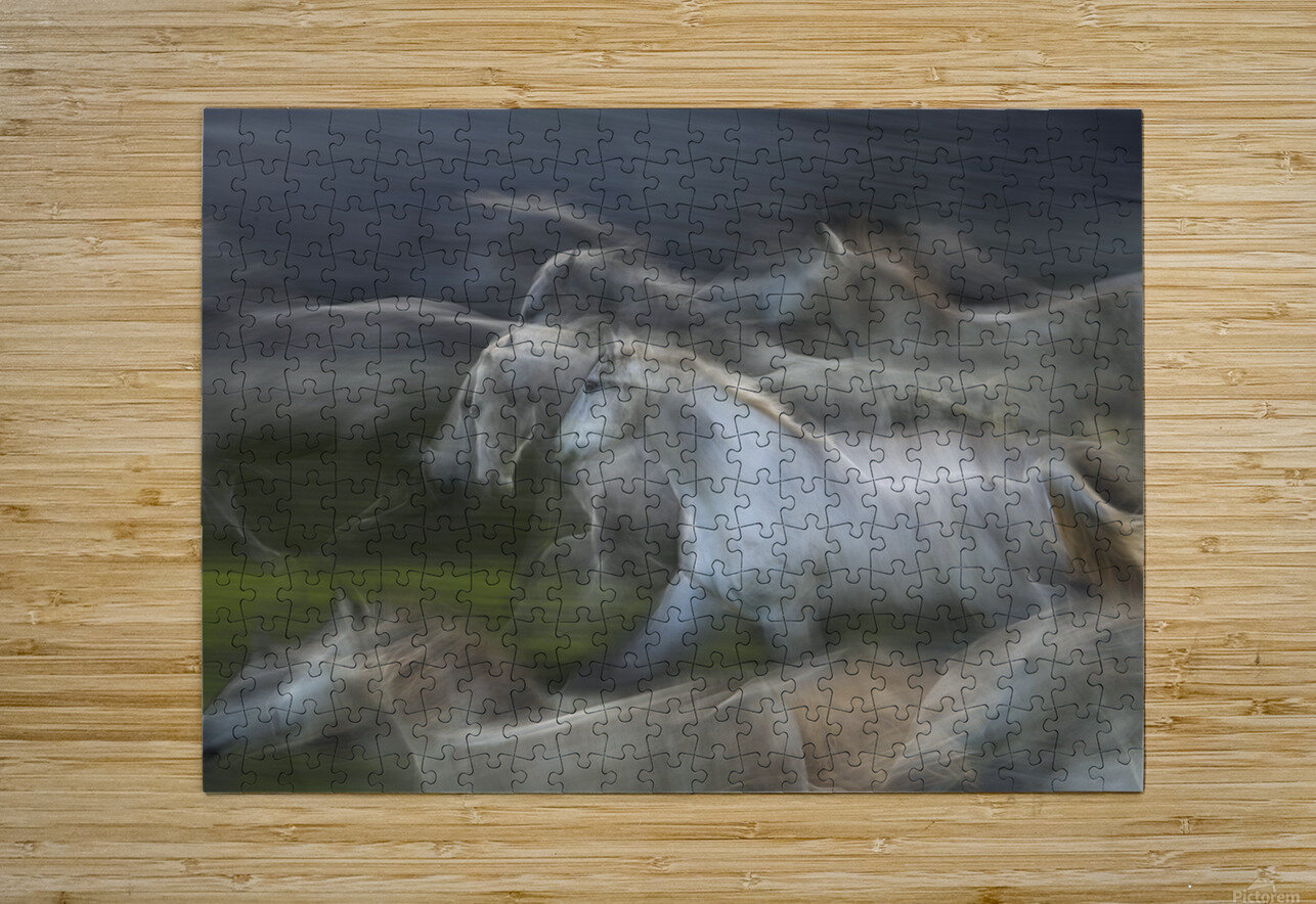 Stampedo  HD Metal print with Floating Frame on Back