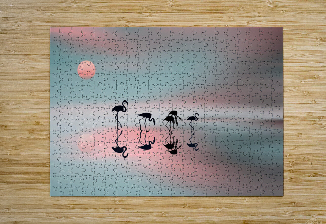 Family flamingos  HD Metal print with Floating Frame on Back