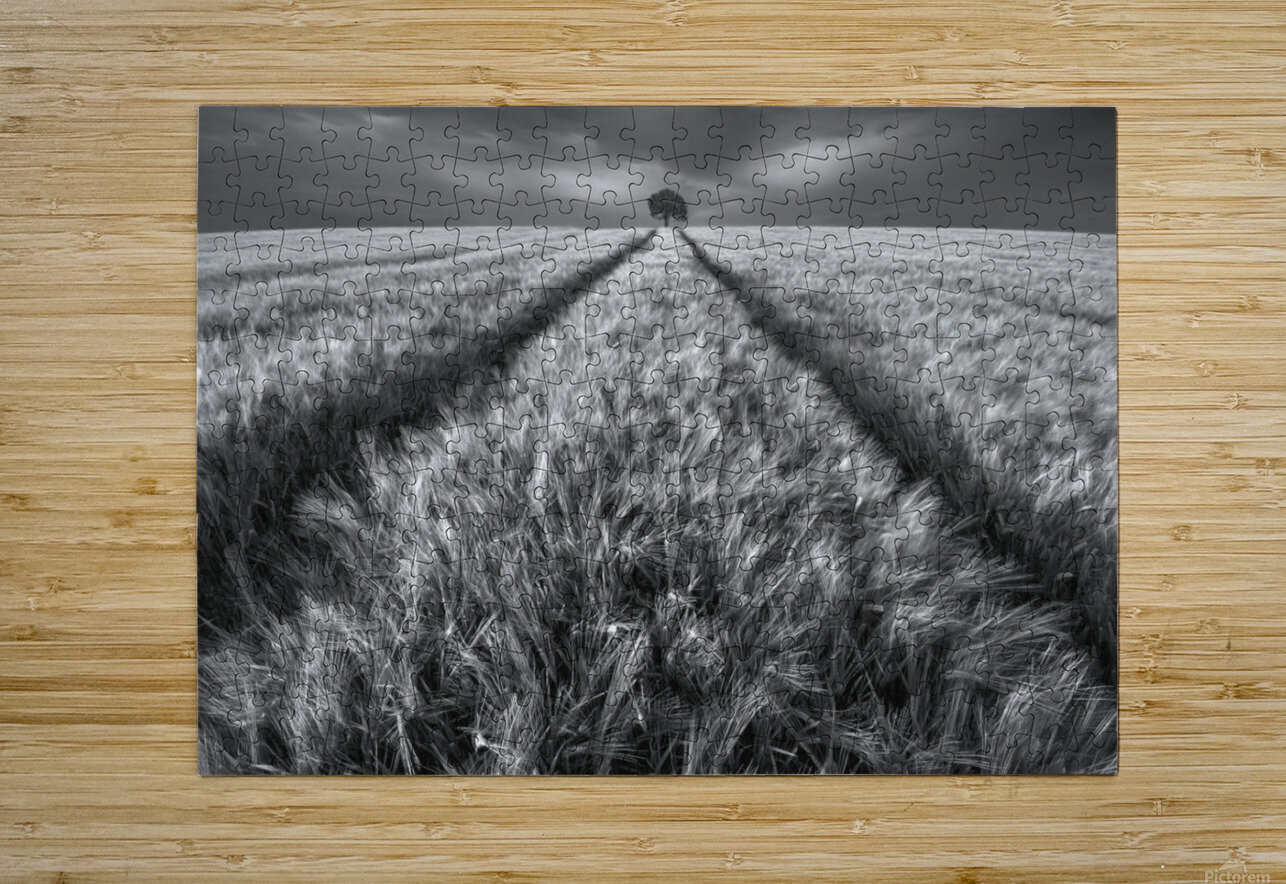 Alone  HD Metal print with Floating Frame on Back
