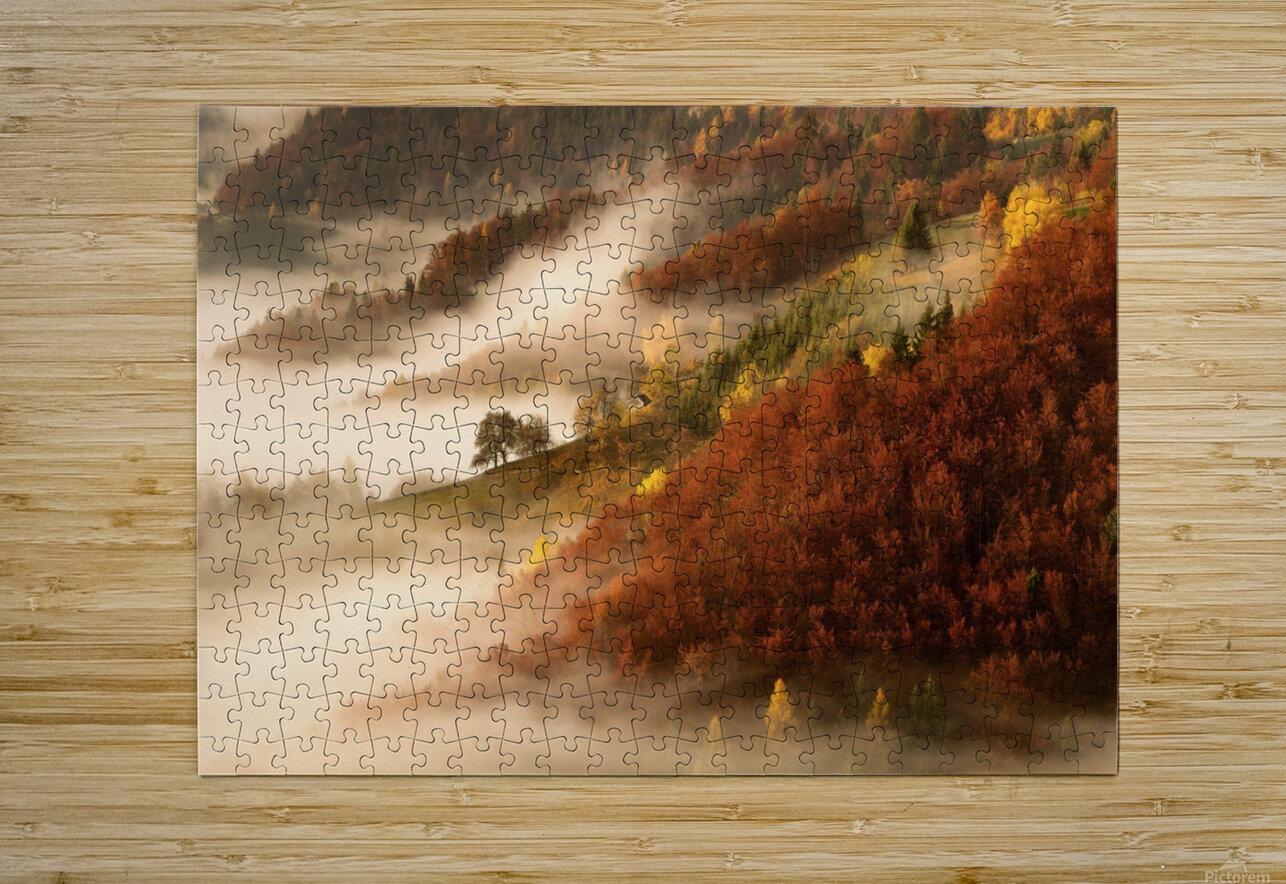 November's fog  HD Metal print with Floating Frame on Back