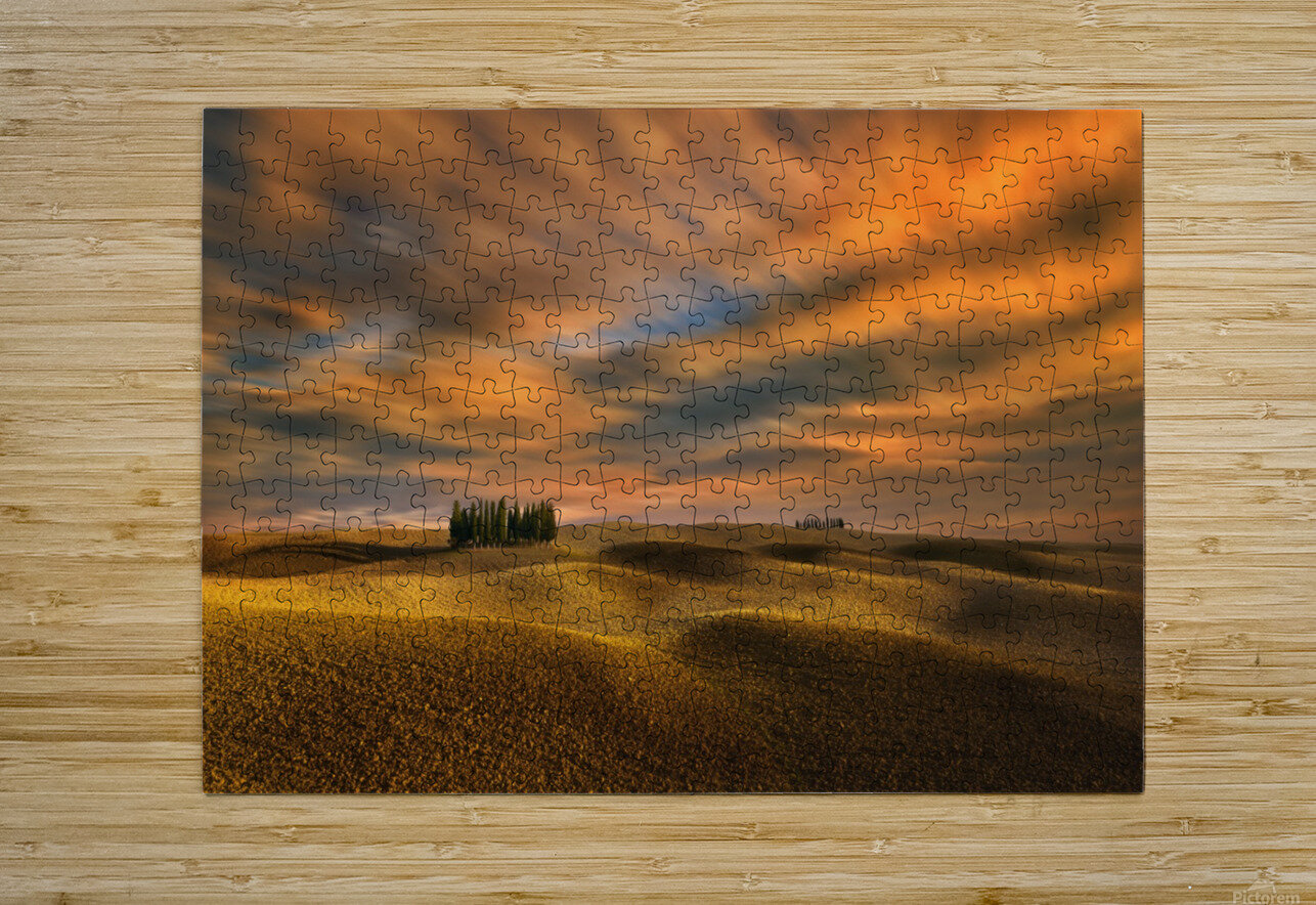 Cypresses...  HD Metal print with Floating Frame on Back