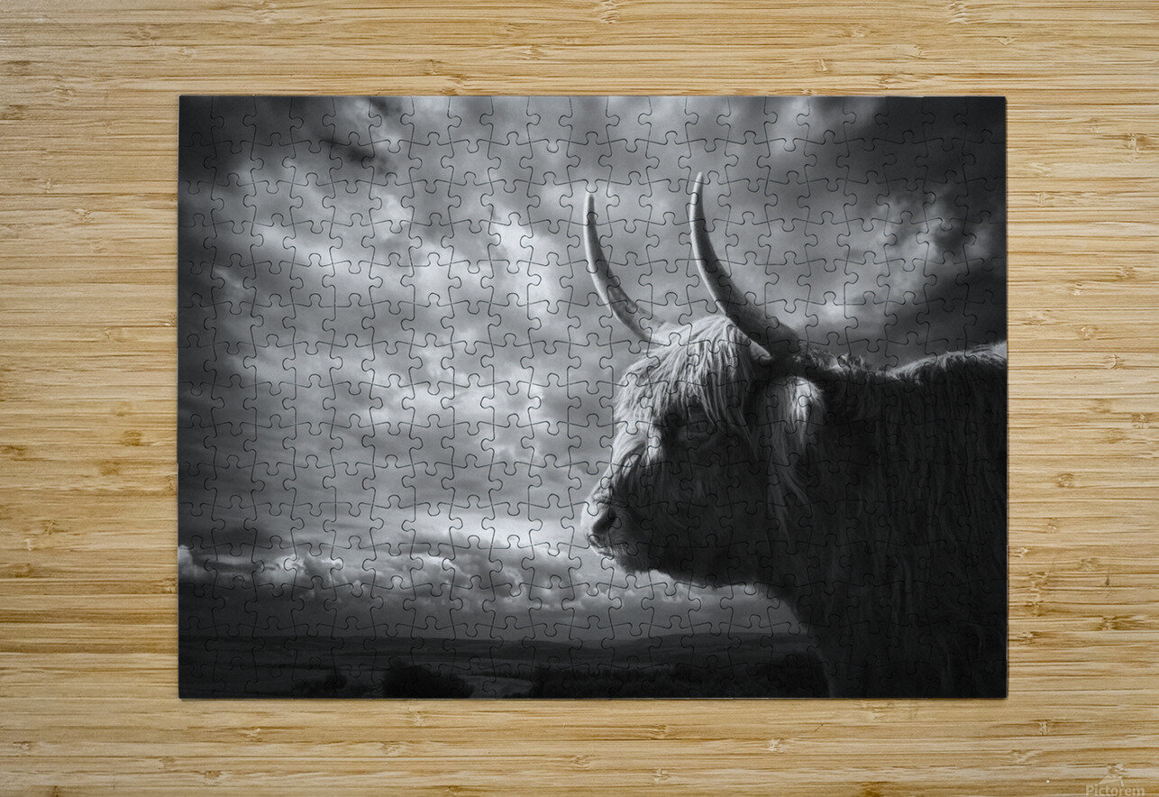 the Highlands  HD Metal print with Floating Frame on Back