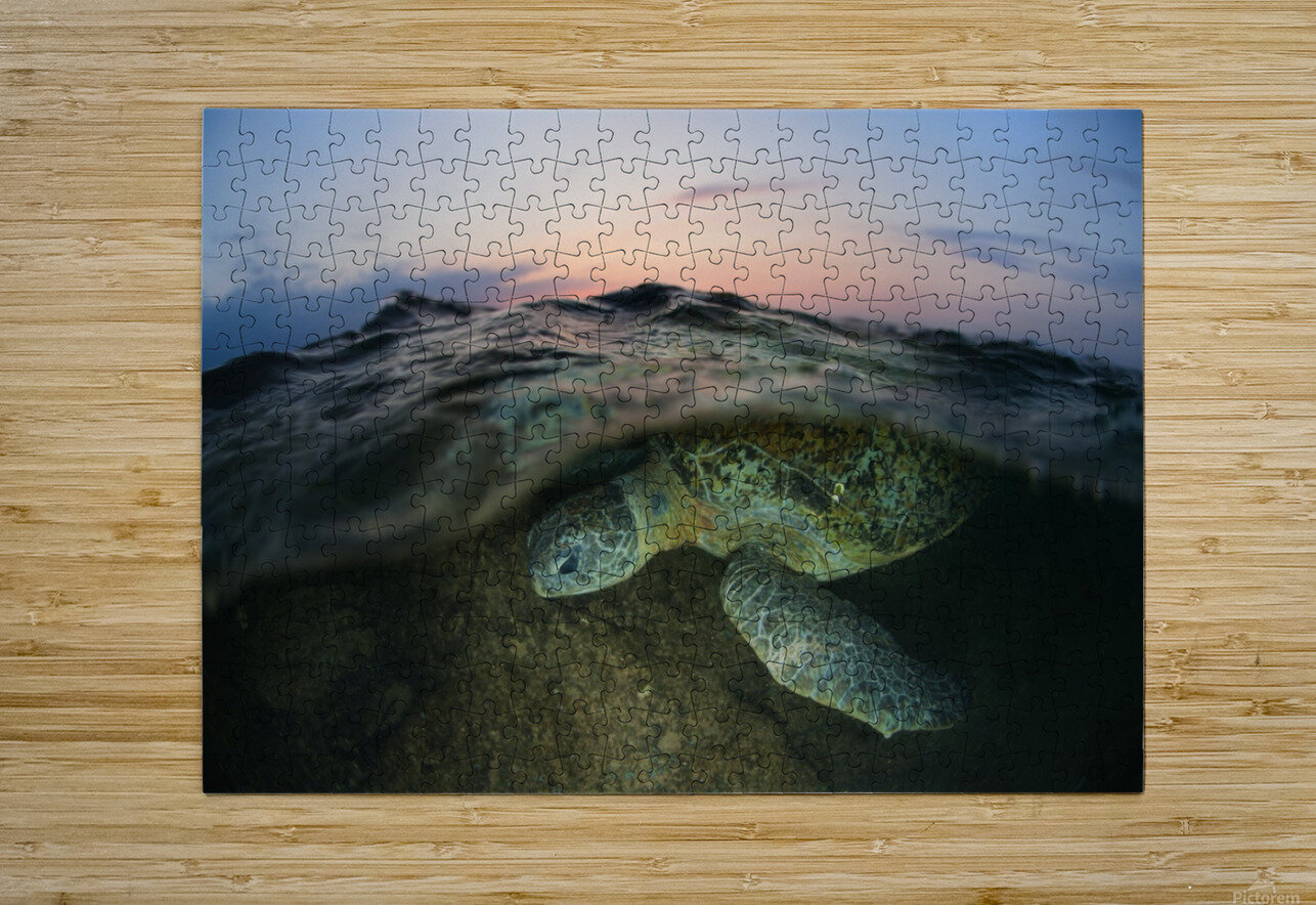 Under the wave  HD Metal print with Floating Frame on Back