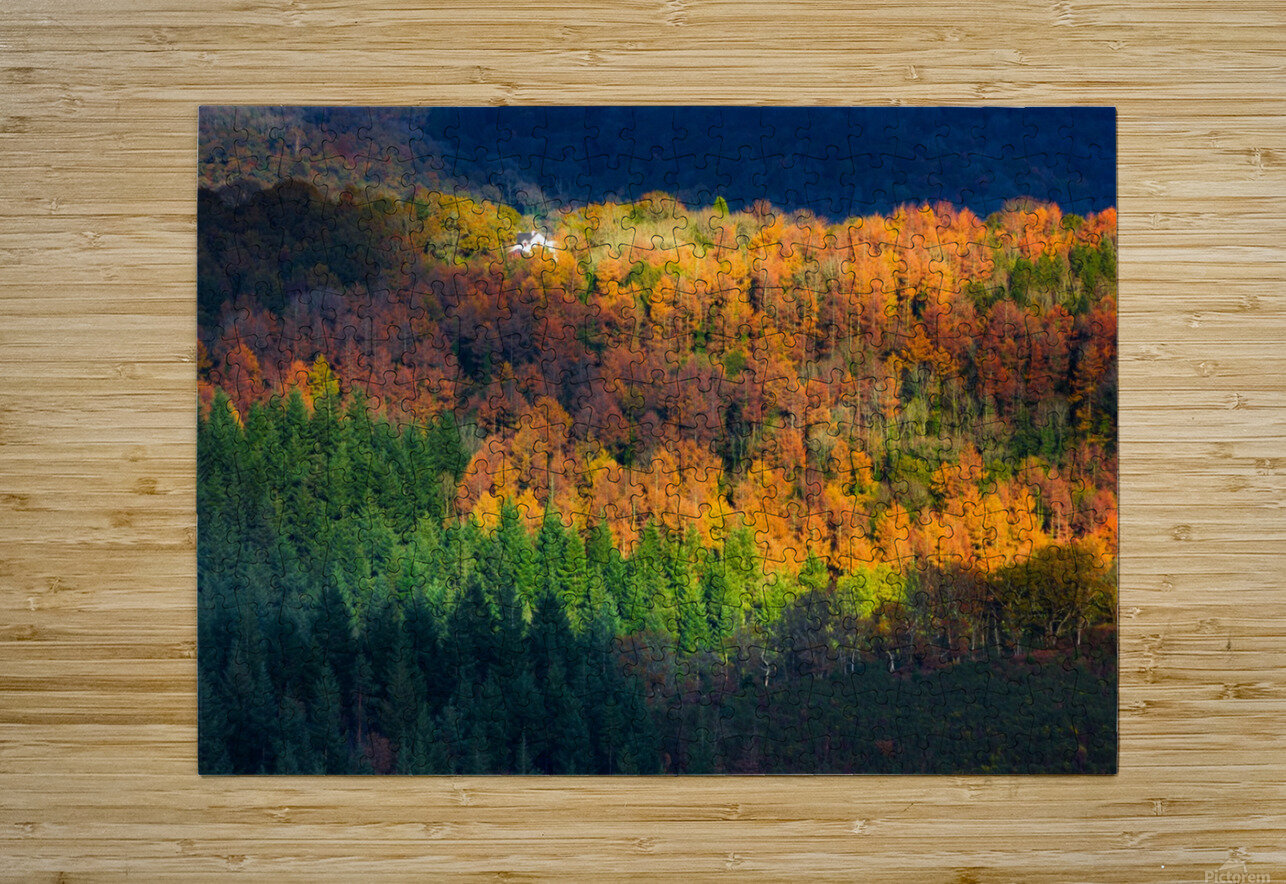 Amongst the trees  HD Metal print with Floating Frame on Back