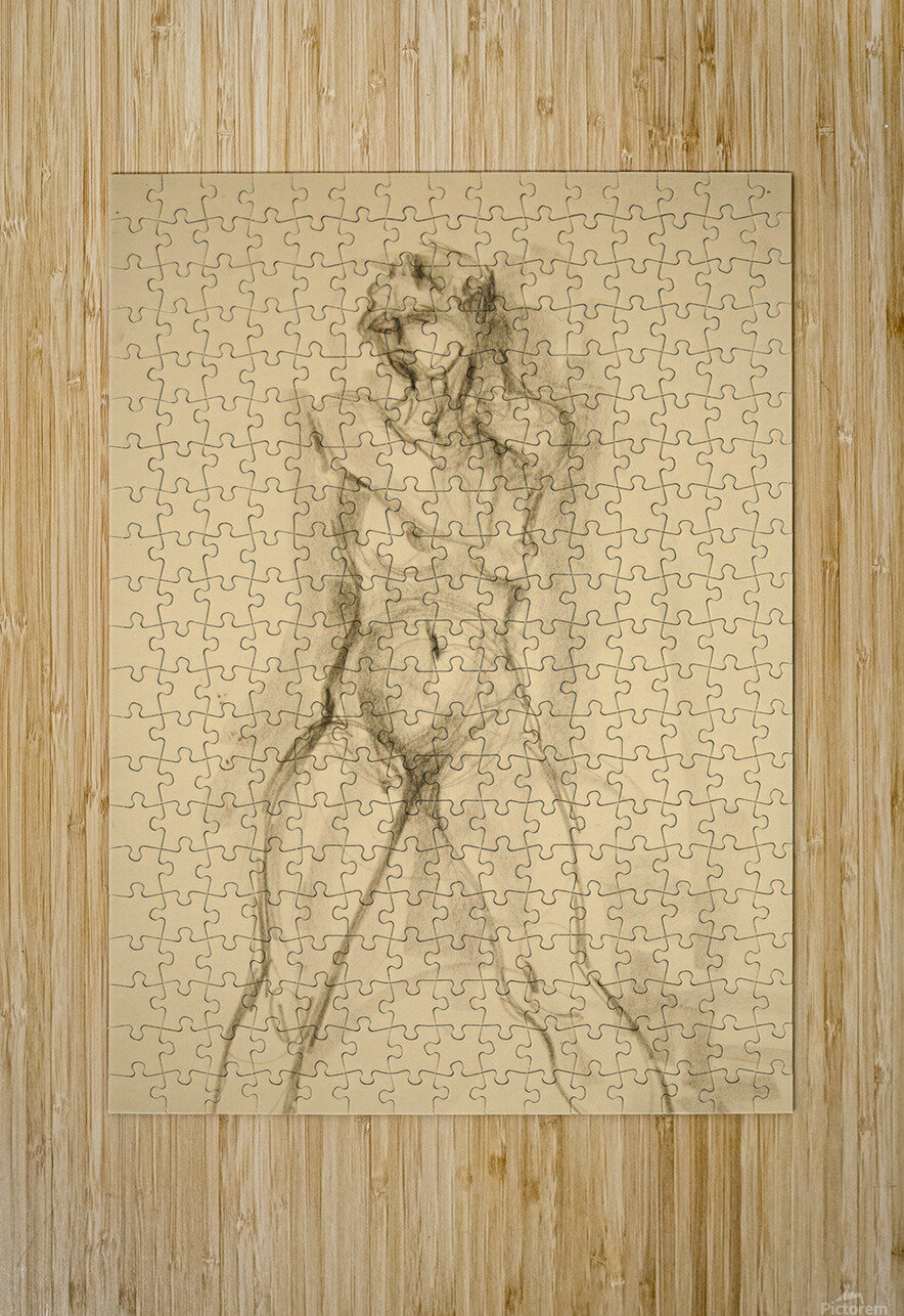 Female Nude Study  HD Metal print with Floating Frame on Back