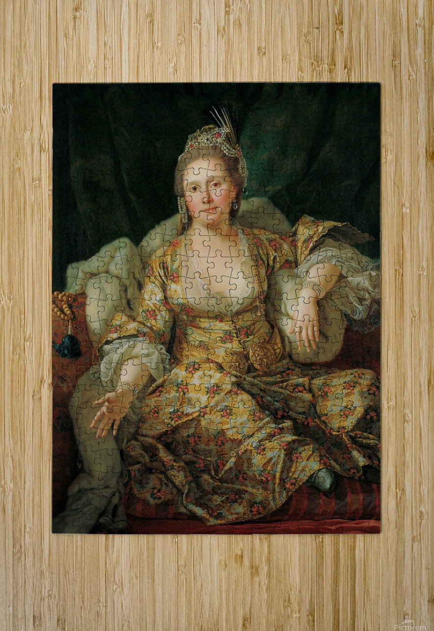 Portrait of the Countess of Vergenne  HD Metal print with Floating Frame on Back