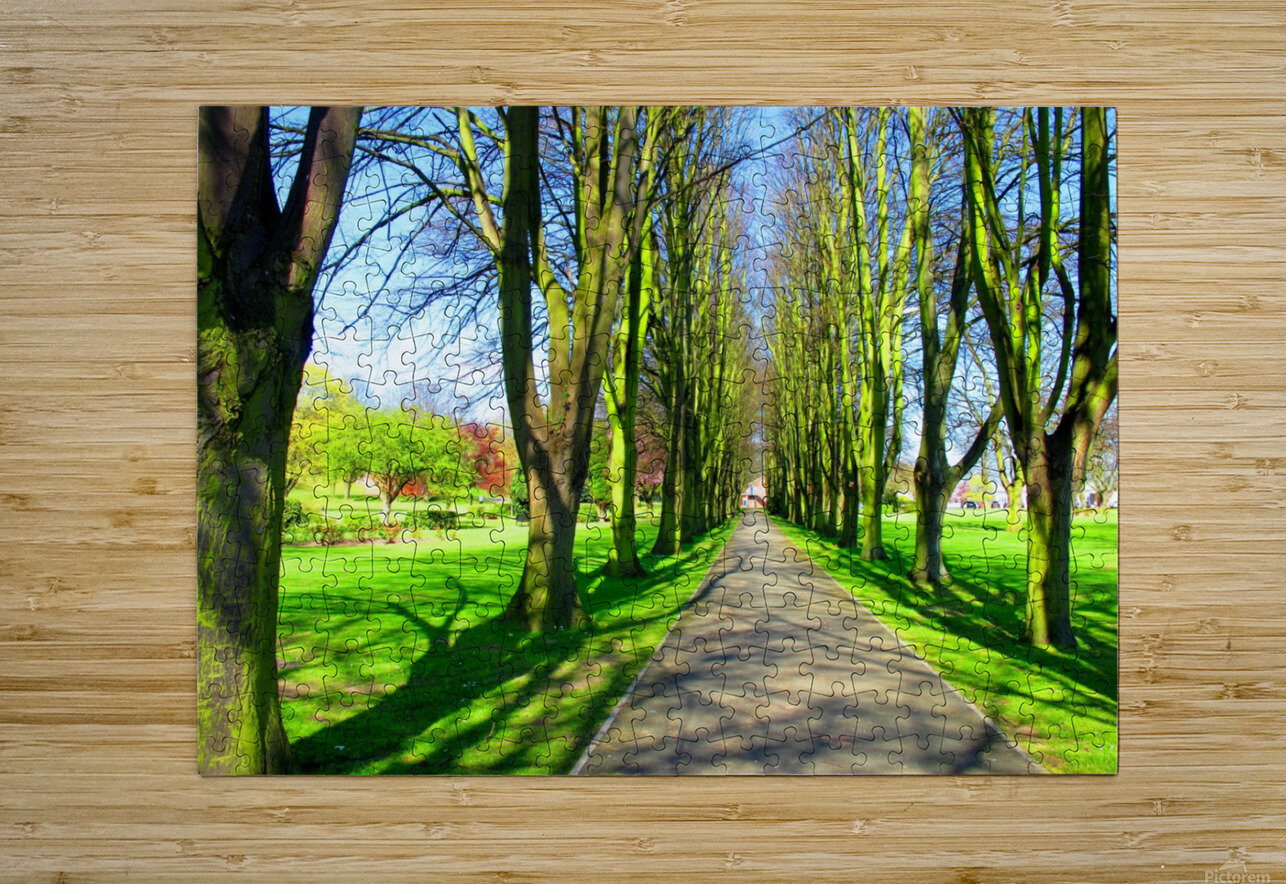 Summer Avenue  HD Metal print with Floating Frame on Back