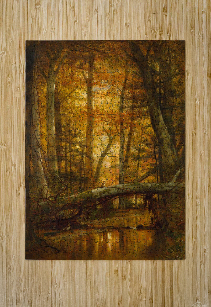 Detail from a forest  HD Metal print with Floating Frame on Back