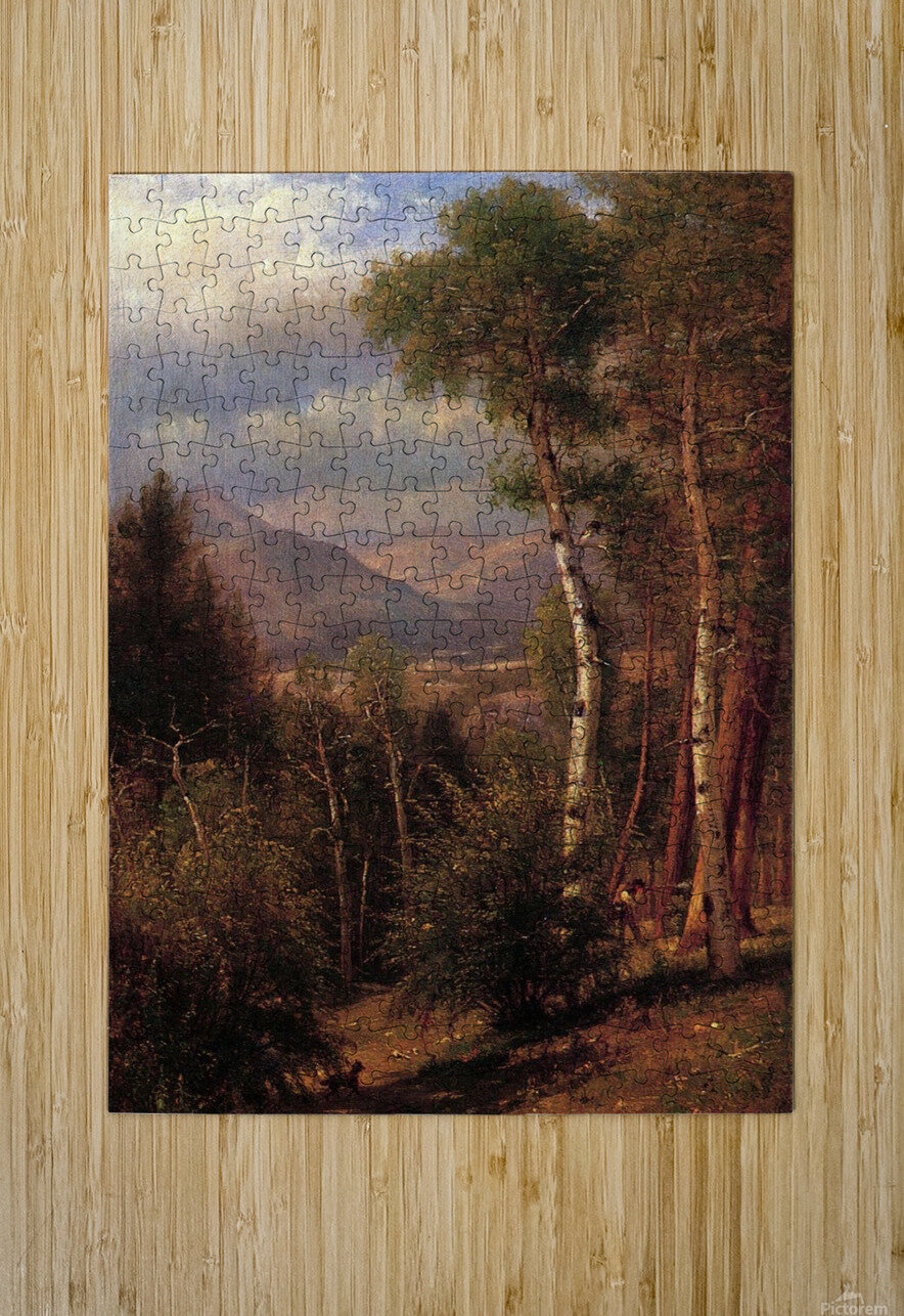 Hunter in the Woods of Ashokan  HD Metal print with Floating Frame on Back