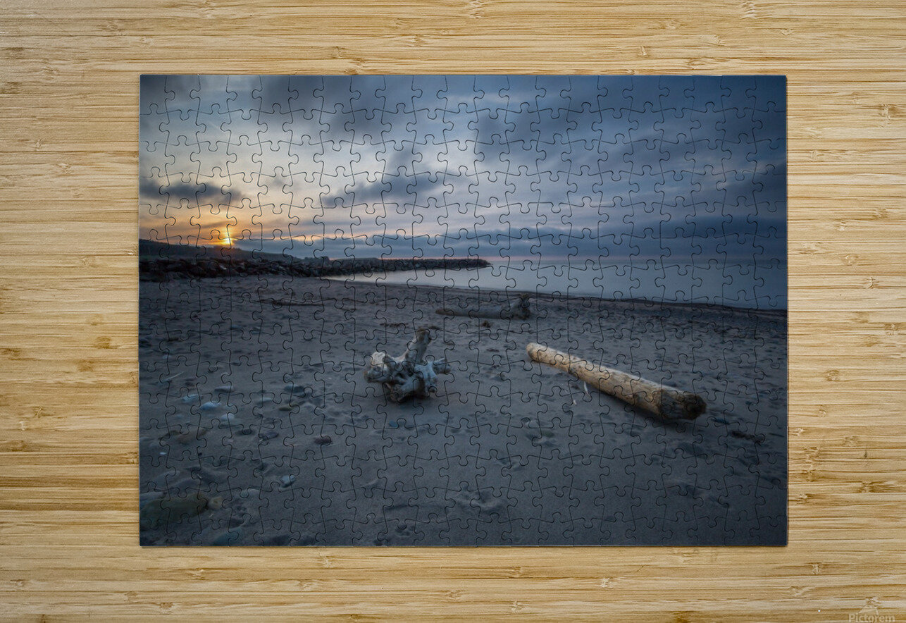Paws in the Sand  HD Metal print with Floating Frame on Back