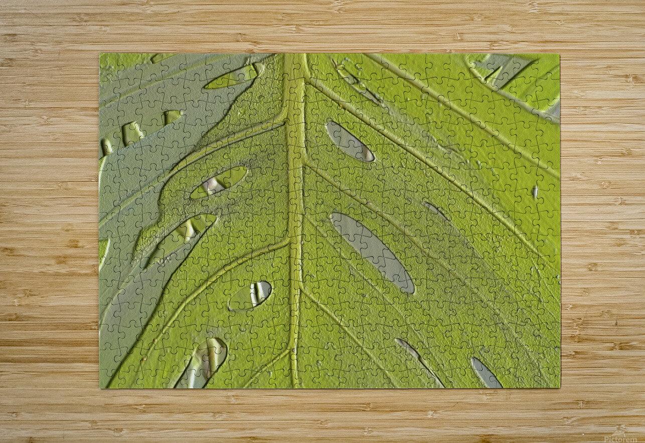Leaf Texture Background  HD Metal print with Floating Frame on Back