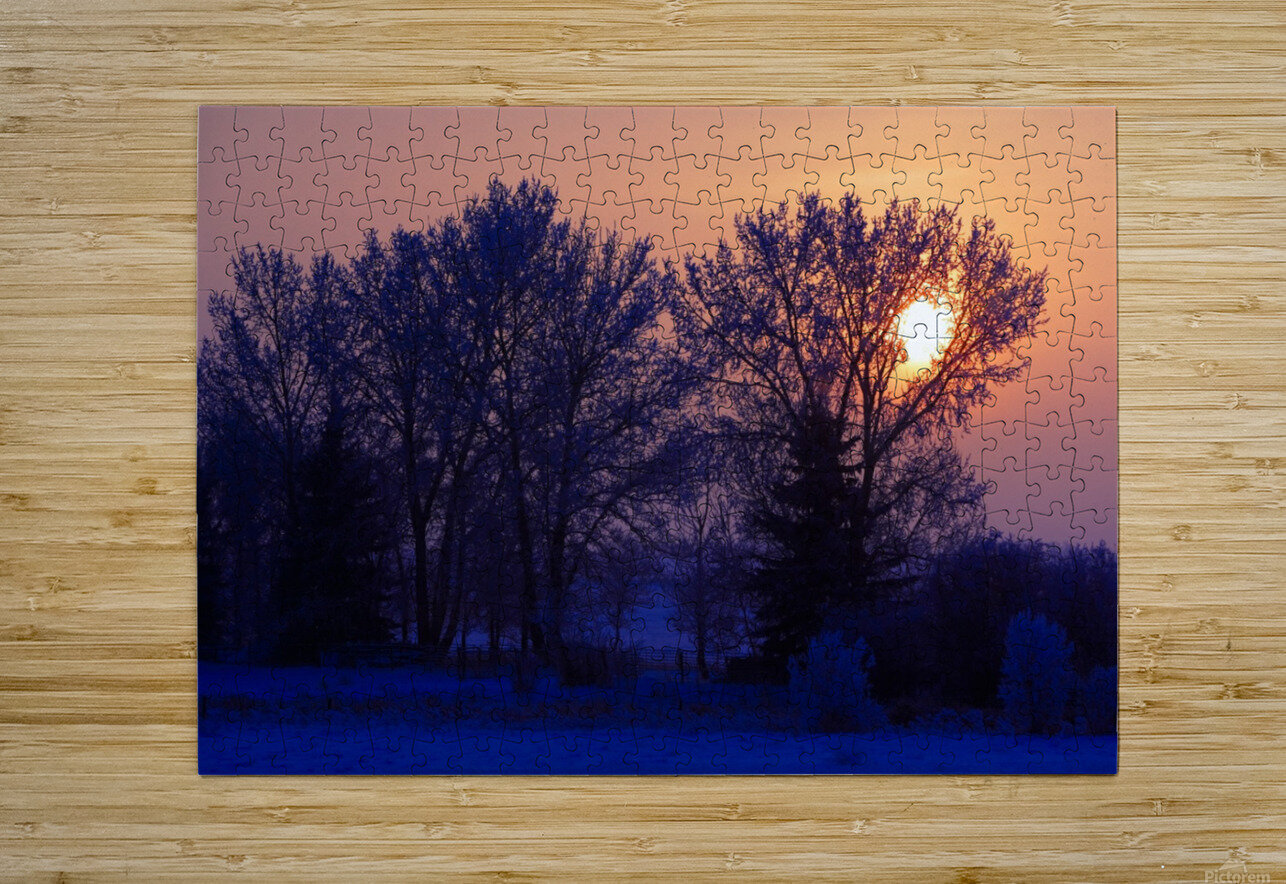Sun Peeking Through Some Trees  HD Metal print with Floating Frame on Back