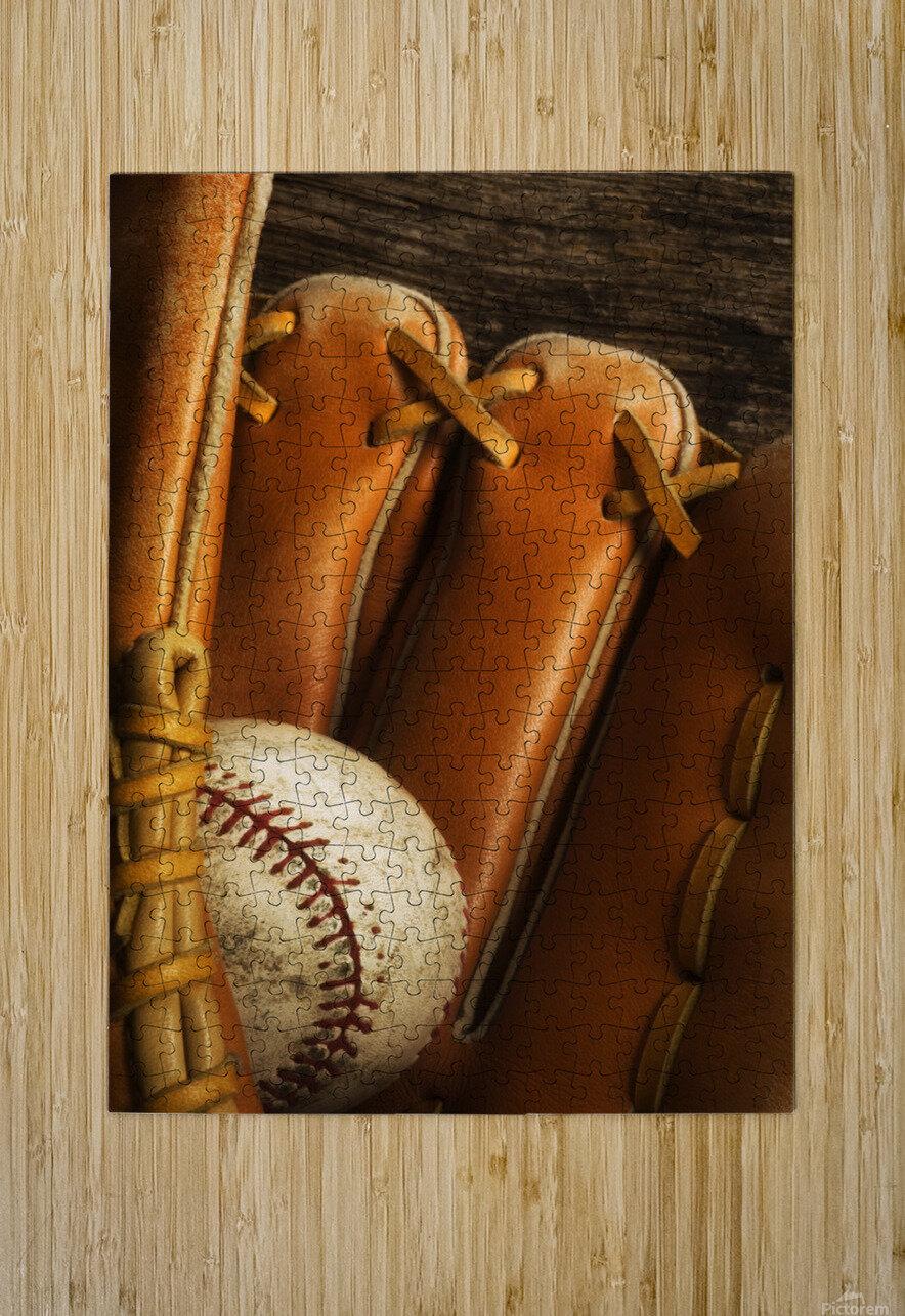 Baseball Glove And Baseball  HD Metal print with Floating Frame on Back