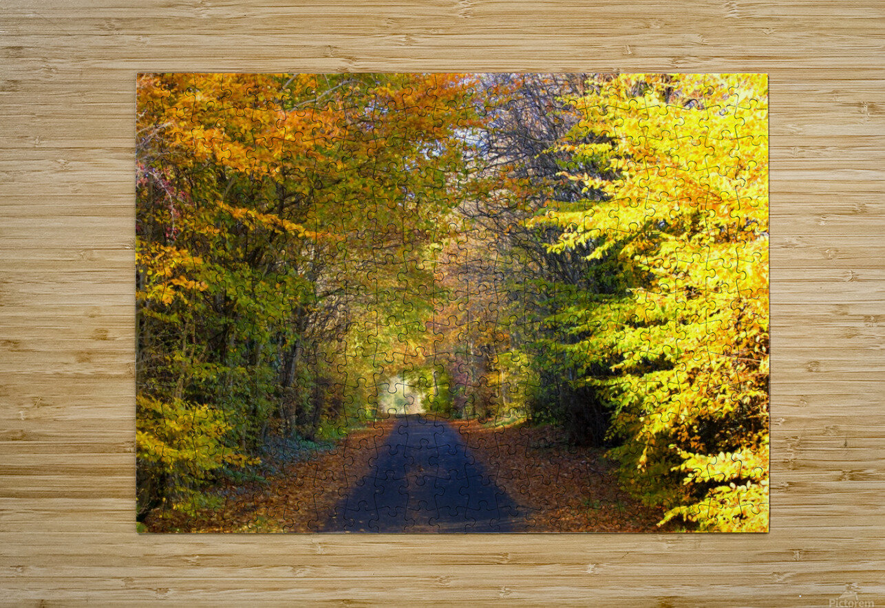 Rural Road, Argyll And Bute, Scotland  HD Metal print with Floating Frame on Back