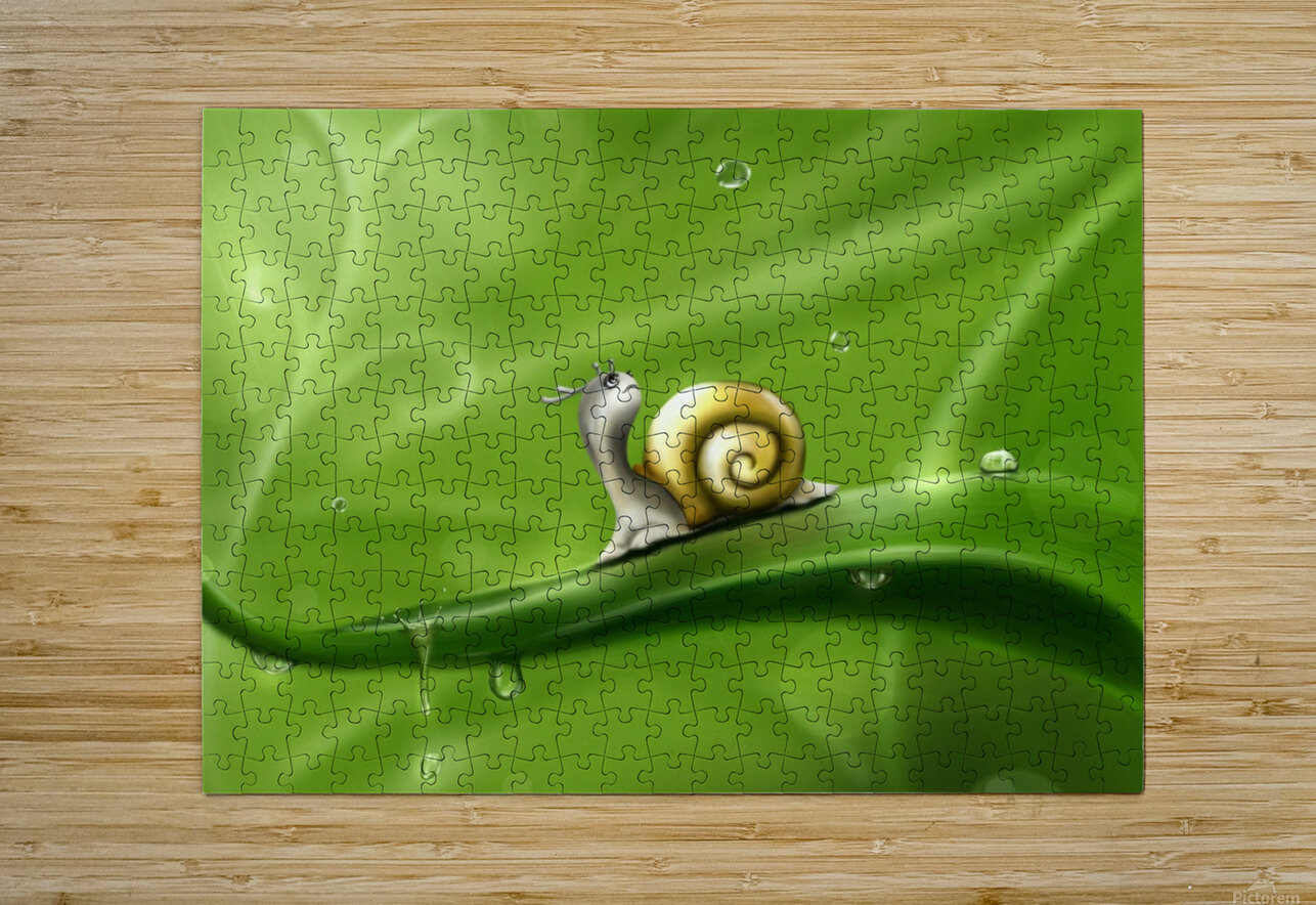 Snail  HD Metal print with Floating Frame on Back