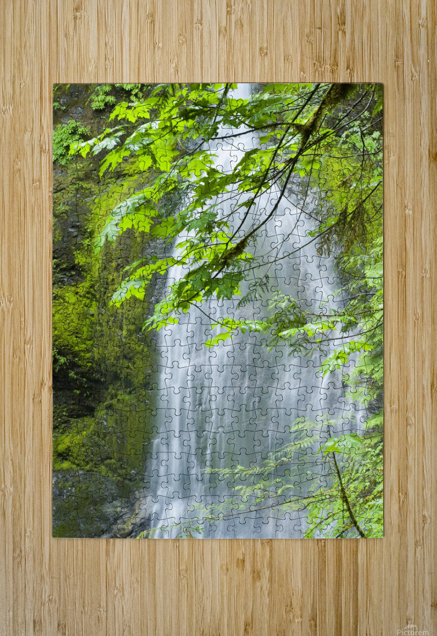 Marymere Falls, Olympic National Park  HD Metal print with Floating Frame on Back