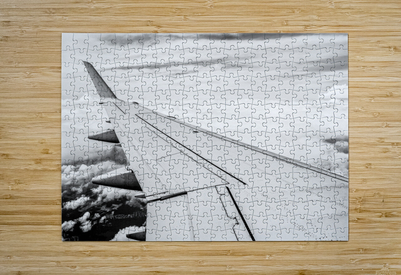 Airplane Wing  HD Metal print with Floating Frame on Back