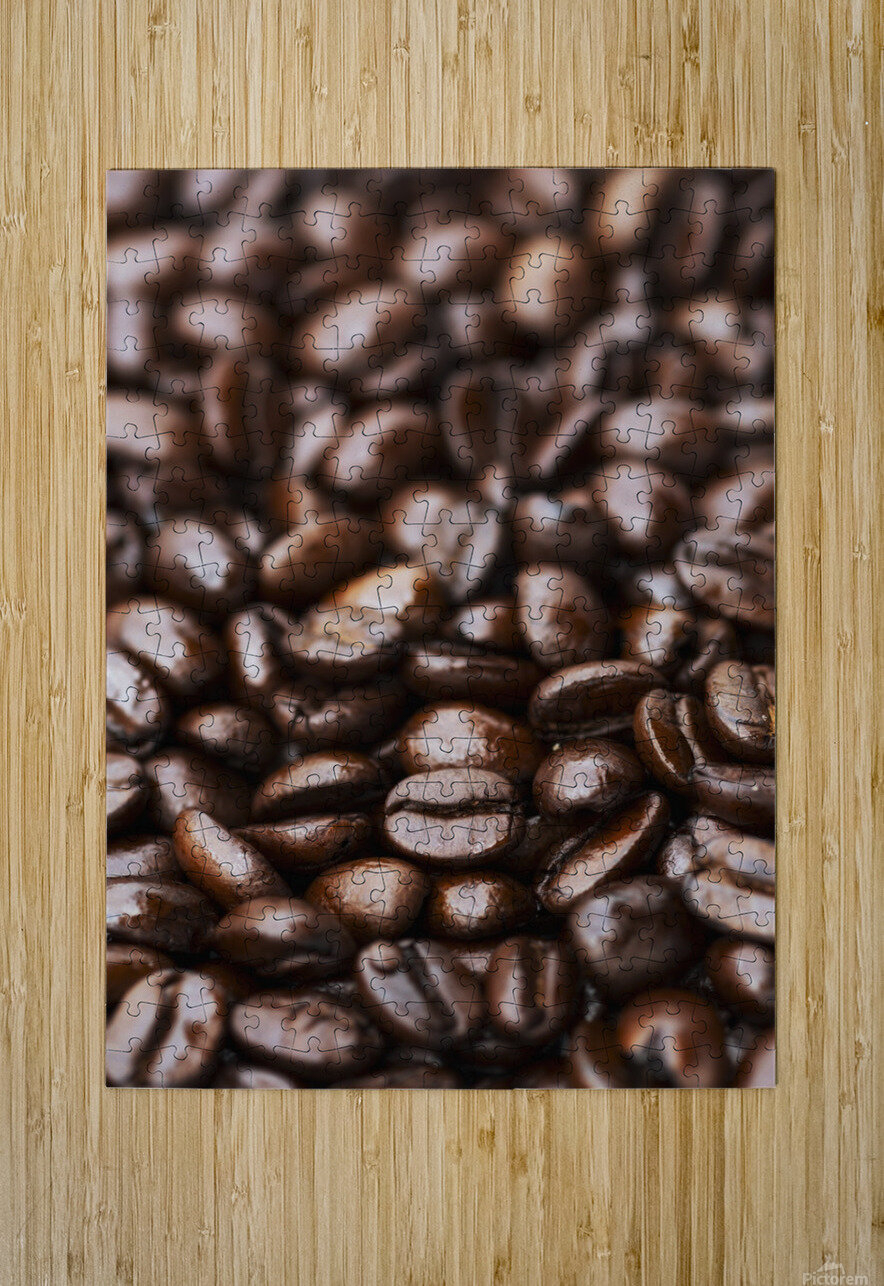 Medium dark roast Kona coffee beans close up; Holualoa, Big Island, Hawaii, United States of America  HD Metal print with Floating Frame on Back