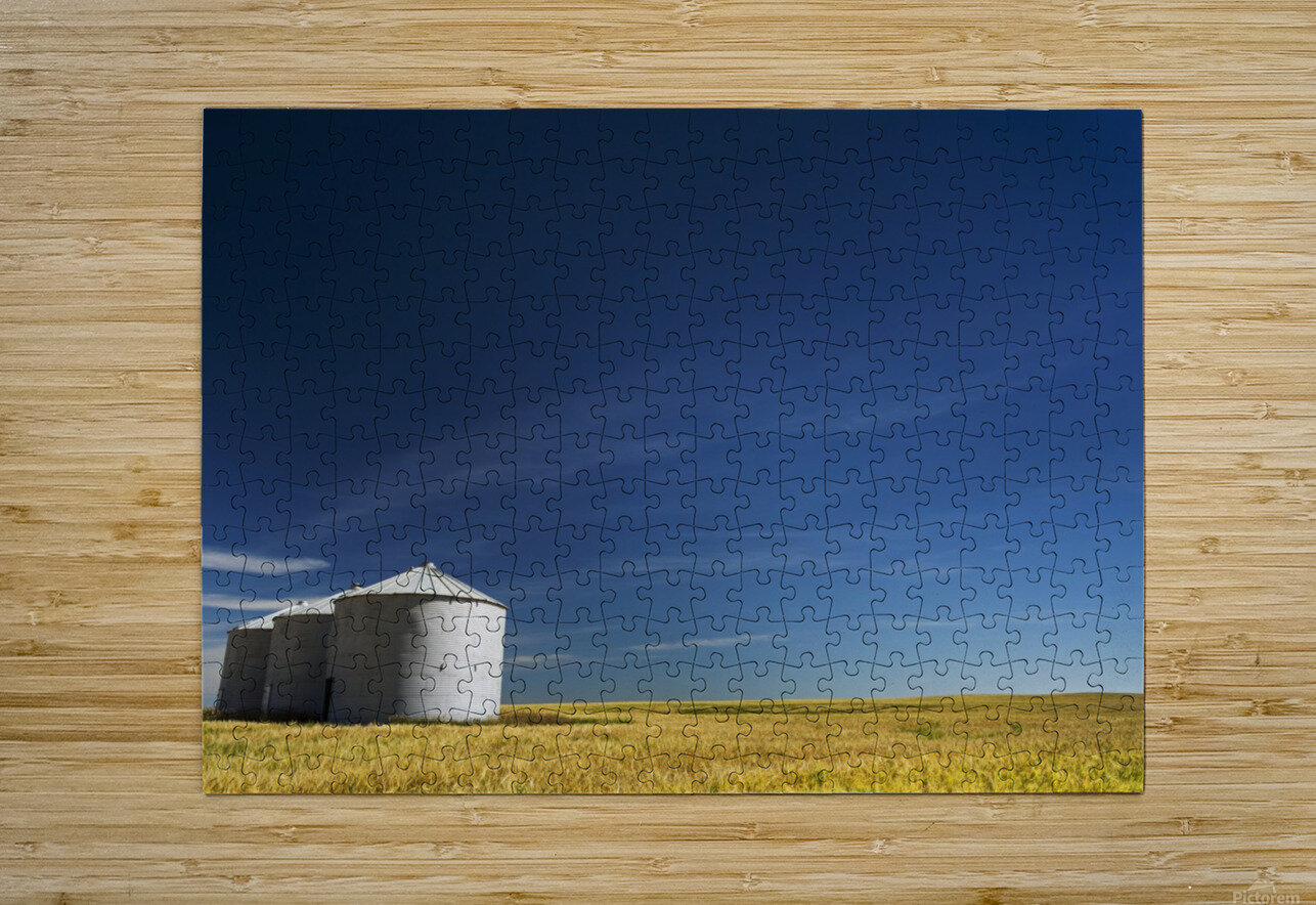 Large metal grain bins in a barley field with blue sky and wispy clouds; Acme, Alberta, Canada  HD Metal print with Floating Frame on Back