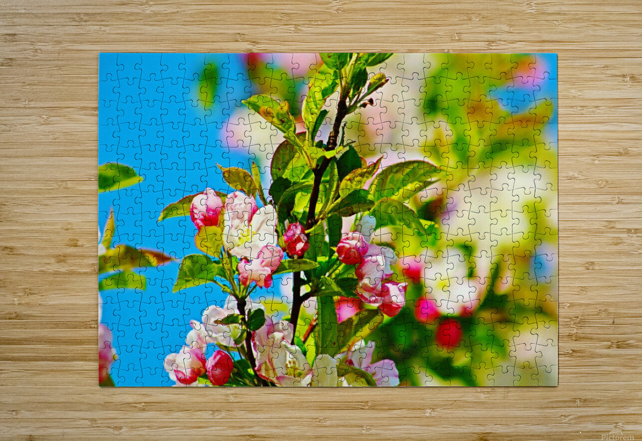 Colors of Spring  HD Metal print with Floating Frame on Back