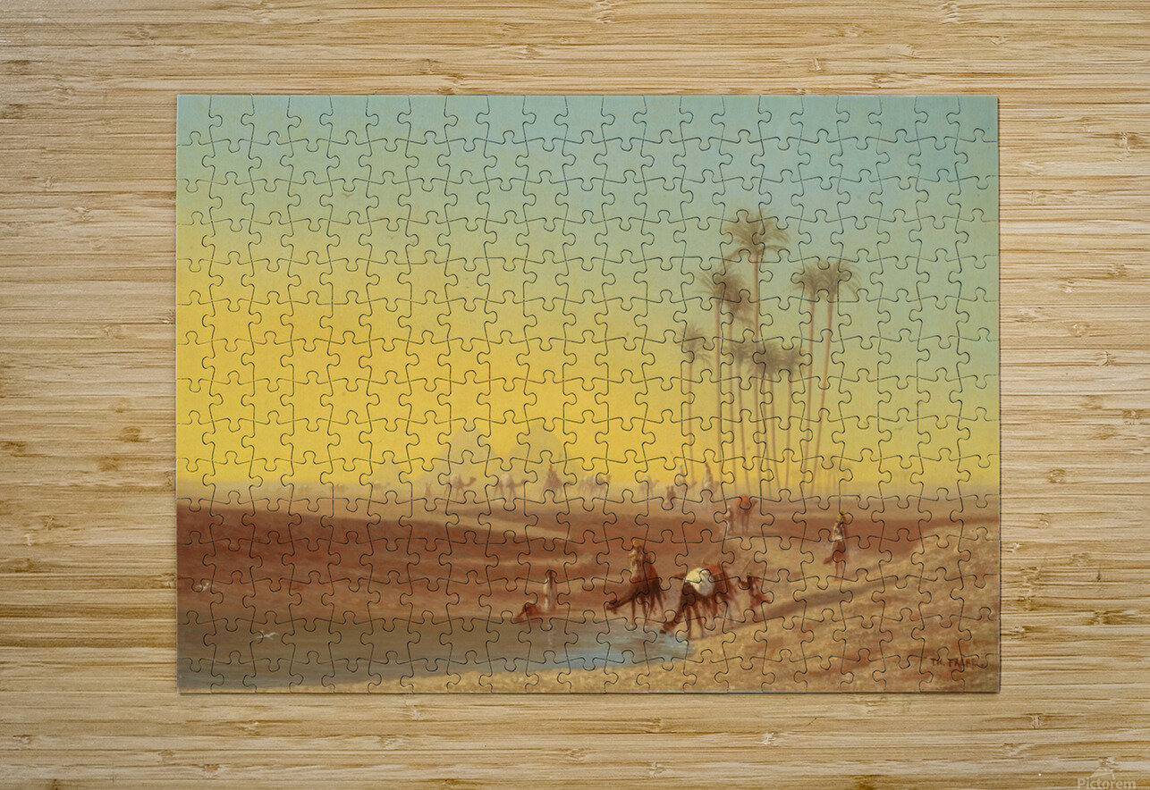 Oasis pres des pyramides  HD Metal print with Floating Frame on Back