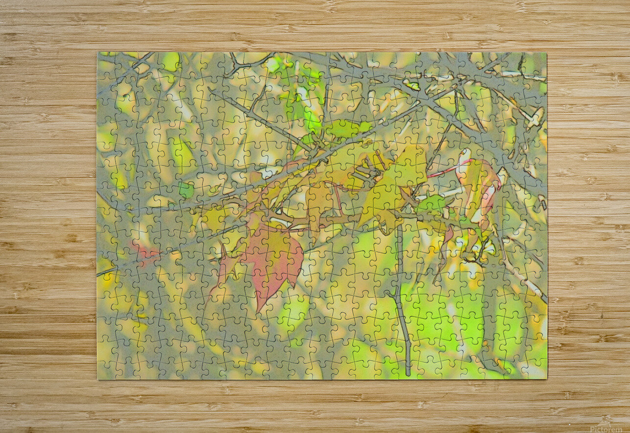 Leaves Macro 5 Abstract 1  HD Metal print with Floating Frame on Back