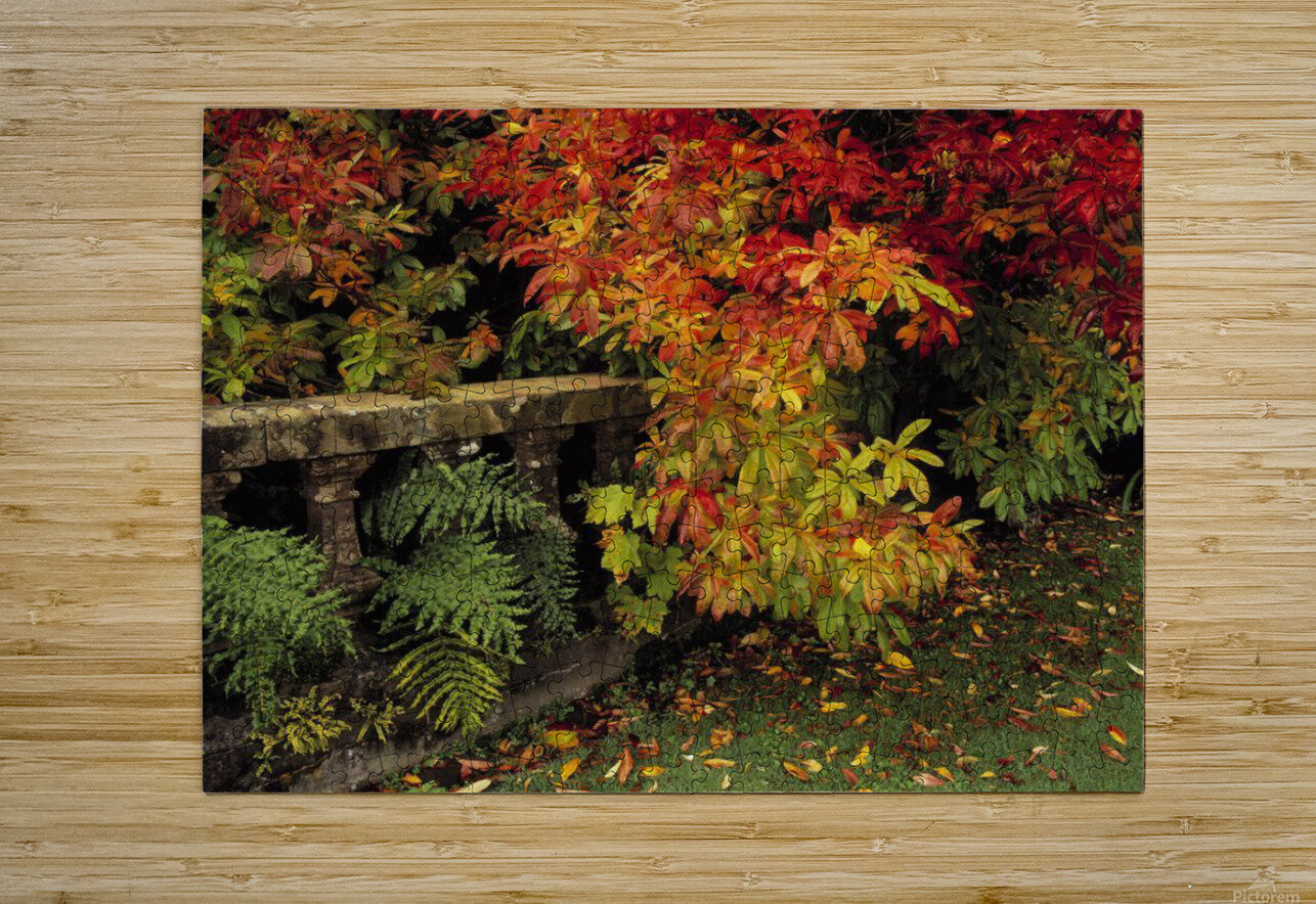 Balustrades & Autumn Colours, Castlewellan, Co Down, Ireland  HD Metal print with Floating Frame on Back