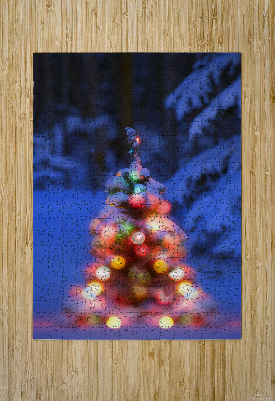 Illuminated Christmas Tree In A Forest  HD Metal print with Floating Frame on Back