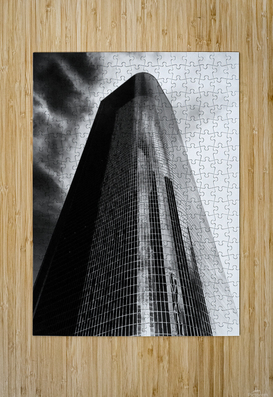 CORPORATE NIGHTMARES II  HD Metal print with Floating Frame on Back