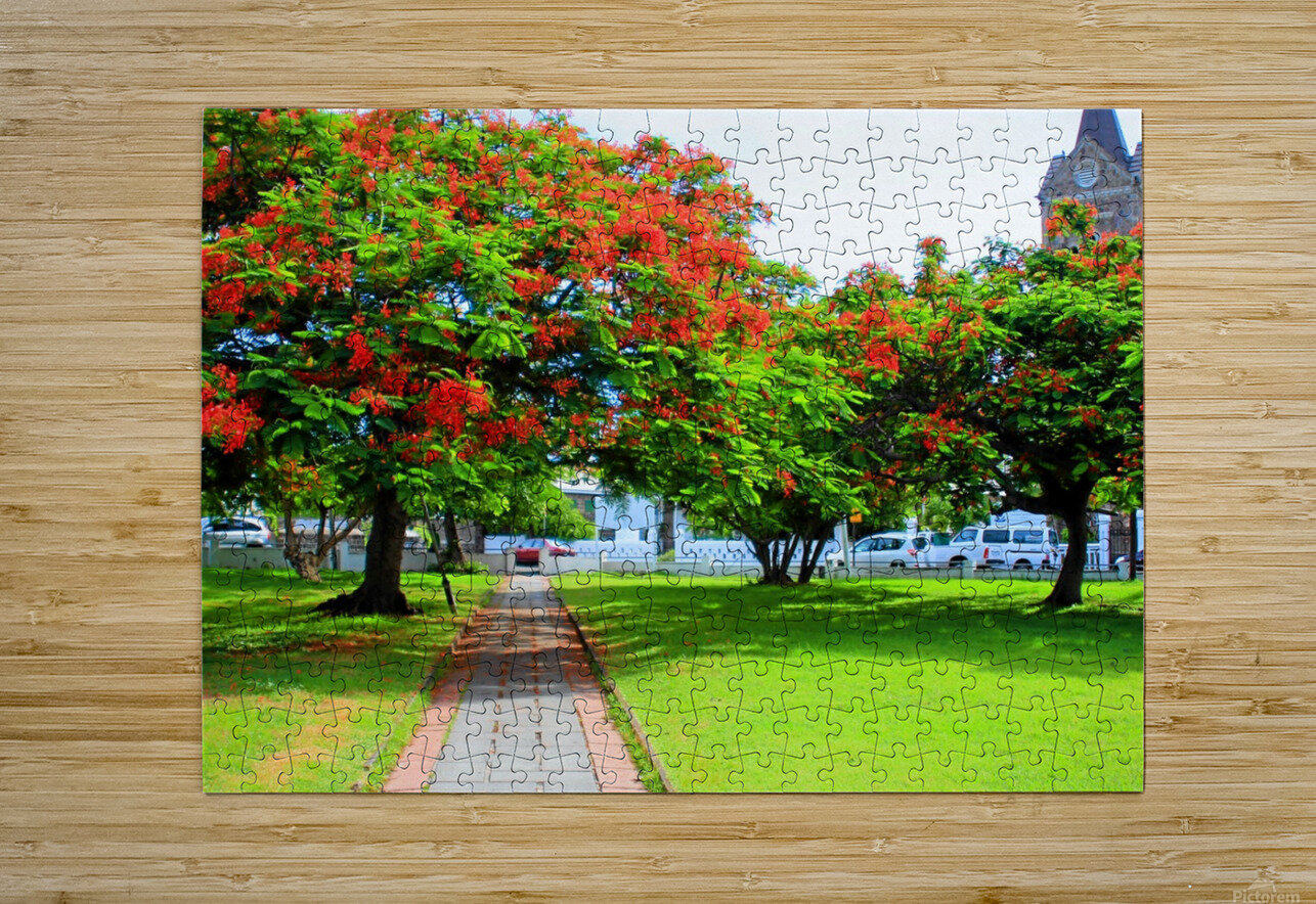 St Kitts Independence Square5  HD Metal print with Floating Frame on Back