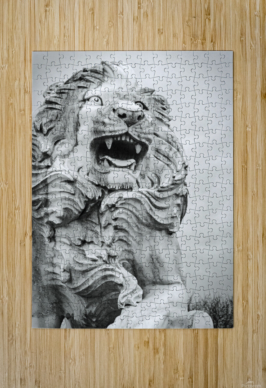 King of the Beast  HD Metal print with Floating Frame on Back