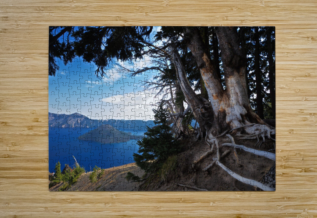 Crater Lake & Gnarled White Pine  HD Metal print with Floating Frame on Back