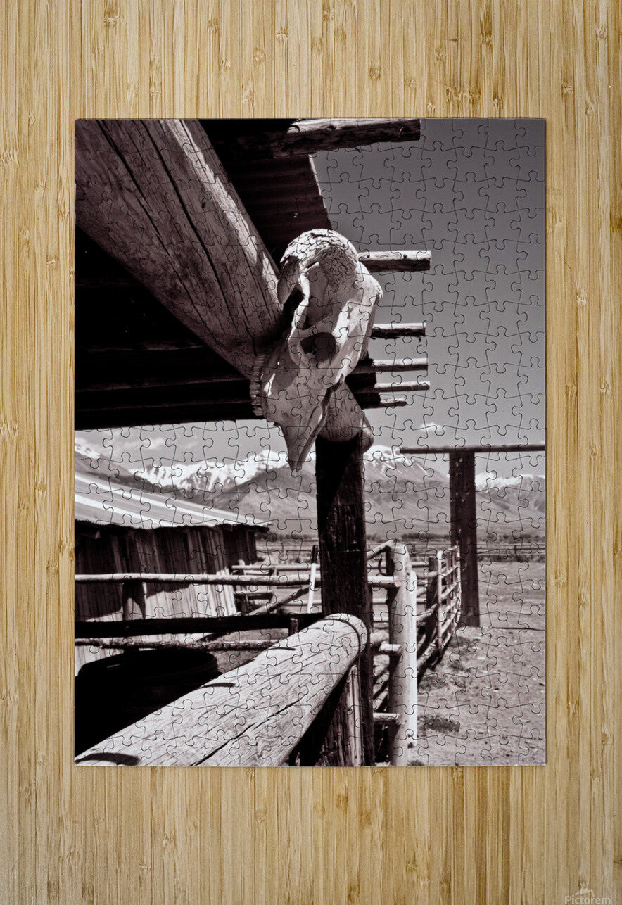 ©lou Freeman Wild West Cowboy Art 1020 21  HD Metal print with Floating Frame on Back