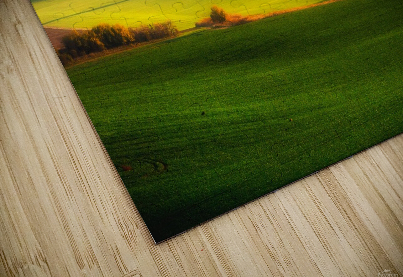 Green fields HD Sublimation Metal print