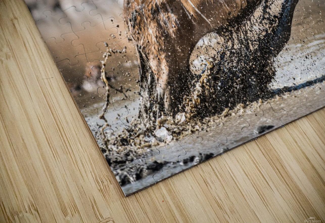 Kudu jump HD Sublimation Metal print