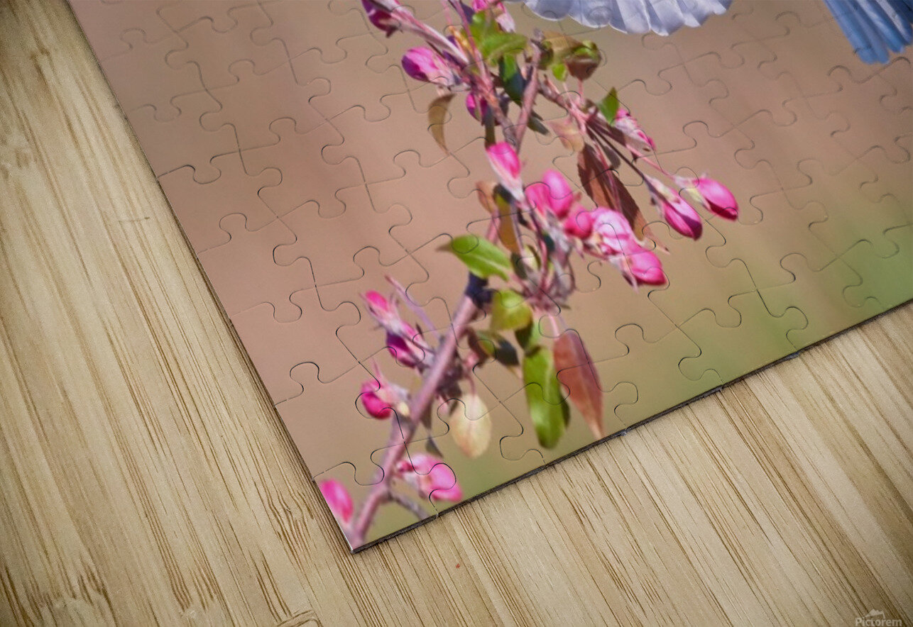 Colorful Spring HD Sublimation Metal print