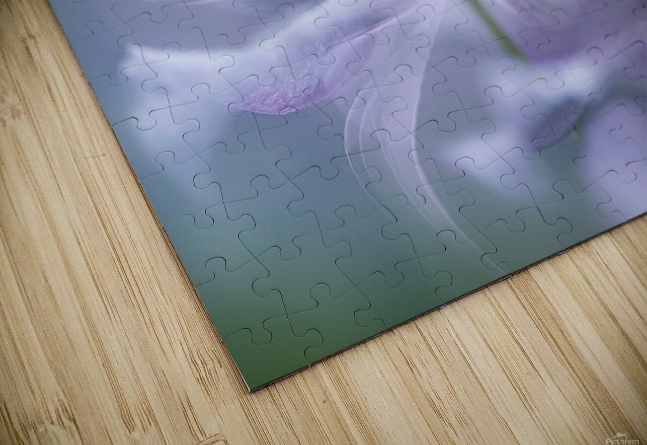 Sway HD Sublimation Metal print
