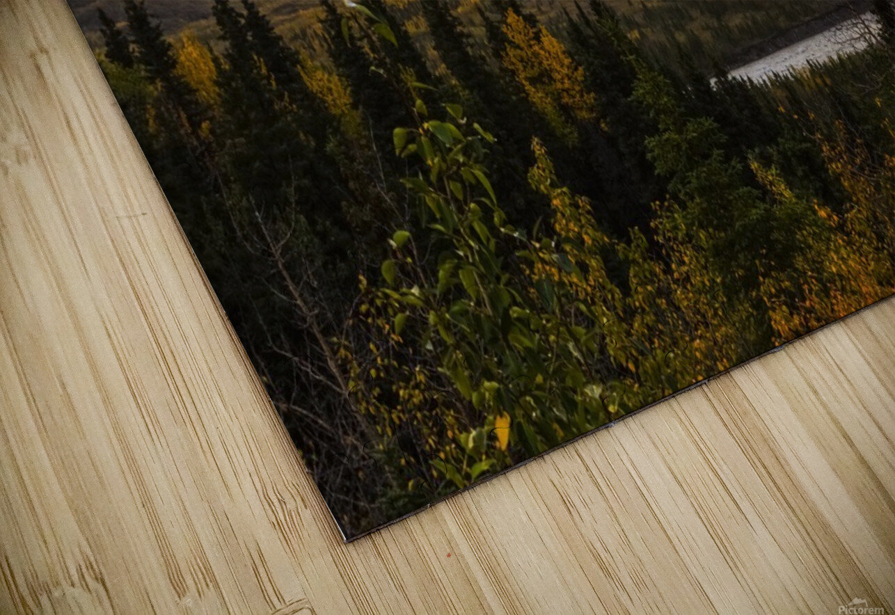 Autumn sunset overlooking the area known as 'Black Rapids' in the Alaska Range along the Richardson Highway; Alaska, United States of America HD Sublimation Metal print