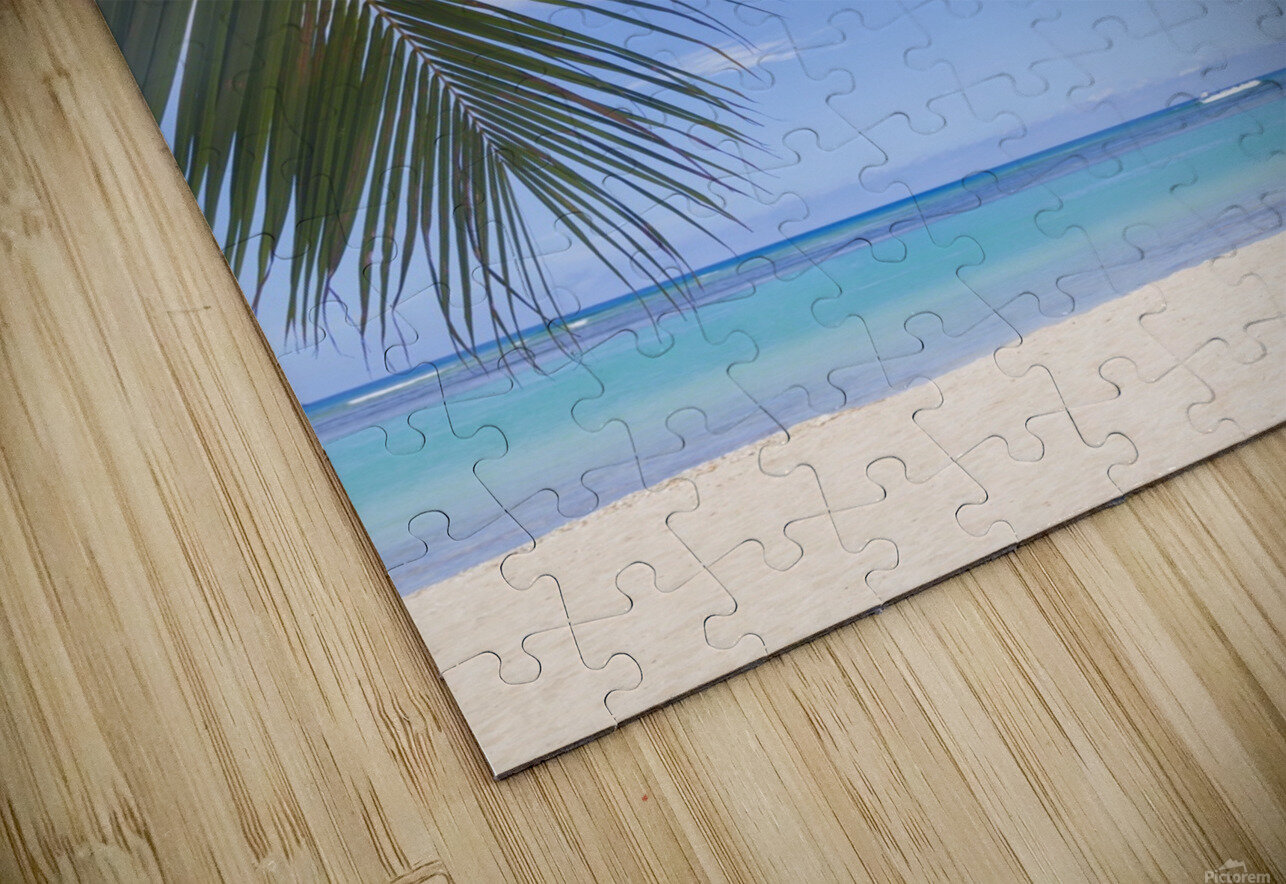 Beautiful clear day on a white sandy beach with coconut palm tree fronds hanging above; Honolulu, Oahu, Hawaii, United States of America HD Sublimation Metal print