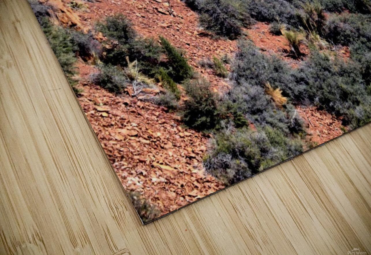 Jerome-6 HD Sublimation Metal print