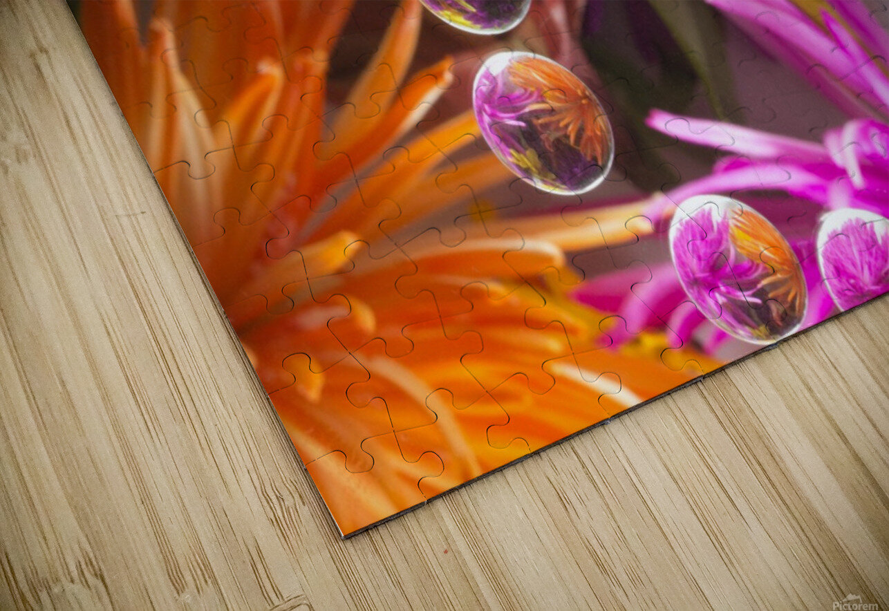 FLOWERS REFRACTION 13 HD Sublimation Metal print
