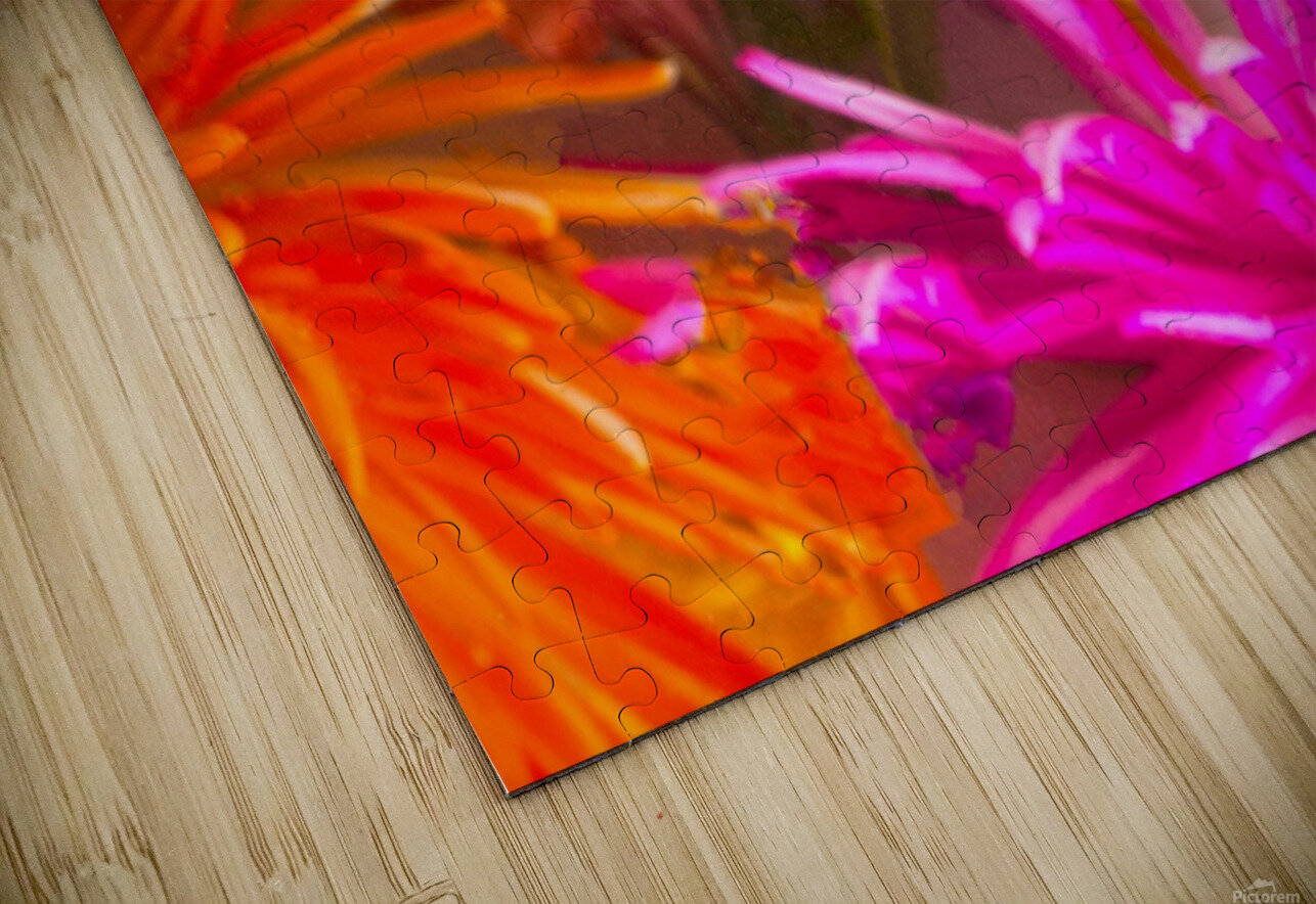 FLOWERS REFRACTION 12 HD Sublimation Metal print