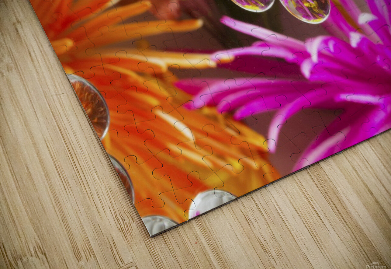 FLOWERS REFRACTION 9 HD Sublimation Metal print