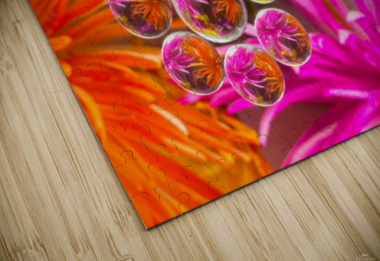 FLOWERS REFRACTION 10 HD Sublimation Metal print